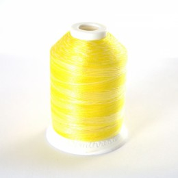 Simthread S113 Variegated Embroidery Thread 1000m Easter Chick